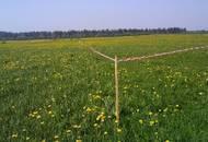 Бесплатные земельные участки многодетным семьям в Московской области