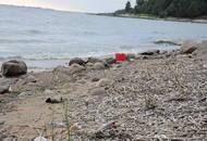 Проект намывных земель под Сестрорецком столкнулся с экологической проблемой