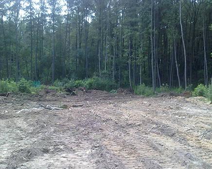 МЖК «Заречный парк»: идет строительство, Октябрь 2016