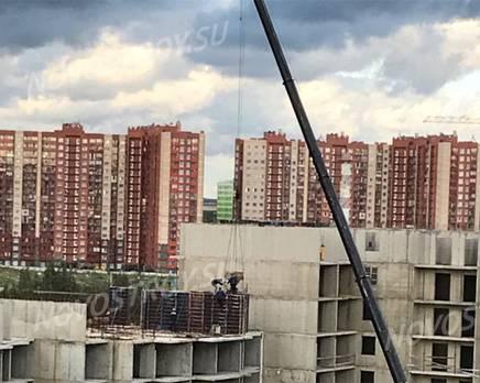 ЖК «Квартал в Мурино»: из группы дольщиков, Август 2019