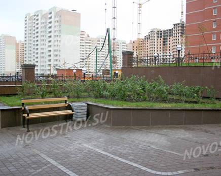 Озеленение внутреннего двора жилого комплекса «Новая династия», Ноябрь 2011