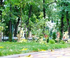 ЖК «Дом на Красина»: визуализация
