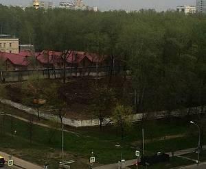 ЖК «Дмитровский Парк»: вырубленный парк