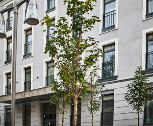 МФК «MOSS Apartments»: фото готового объекта
