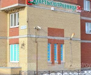 Фасад жилого комплекса «Дом на Дунайском проспекте» (25.02.2013)