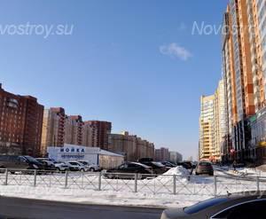 Окрестности Дома на Ленинском проспекте, 84 (16.02.2013)