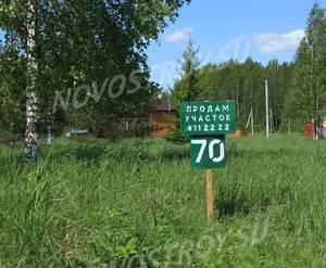 КП «Березовка (Сигмакс)»: июнь 2019