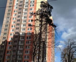 ЖК «Папанинский»: ход строительства