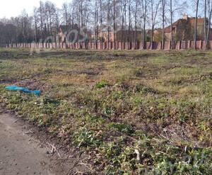 ЖК Миниполис «Восемь кленов»: ход строительства