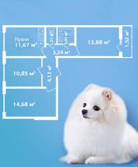 ЖК «Кировский Посад», планировка 3-комнатной квартиры, 63.18 м²