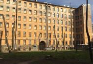 Петербуржцы просят Смольный оставить в покое городские деревья