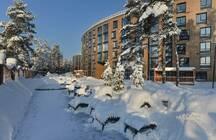Вечерний Novostroy.su: апартаменты могут стать доступной недвижимостью, один из застройщиков Ленобласти банкротится, петербургские крыши предложили приспособить под огороды